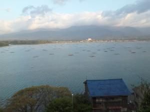 きれいな加茂湖