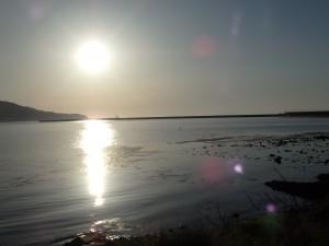 港に日が昇る