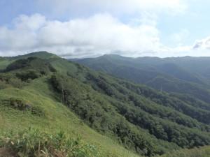 遠くに険しい山々