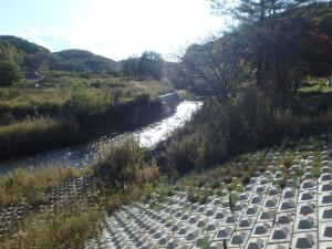 きれいな島松川