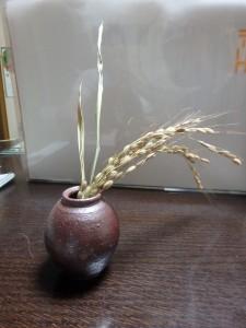 今も毎年続く稲作