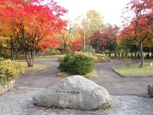 紅葉が美しい公園