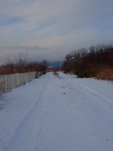 雪の遊歩道を走る