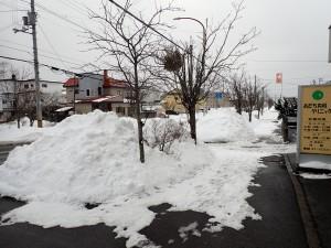 雪を捨てる場所が なくなるよう