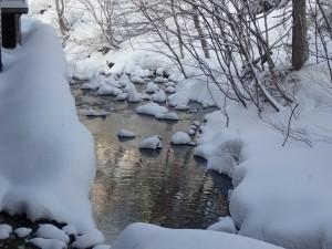 美しいニセコの川