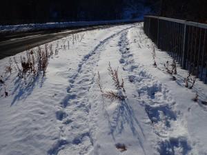 雪道が楽しい