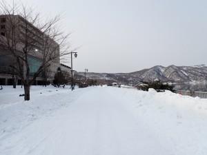 除雪したてだった