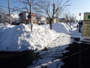 去年も3月に大雪が降った