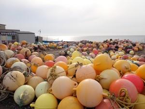 浮き球がいっぱい