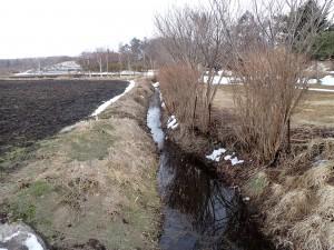 雪解け水が流れる
