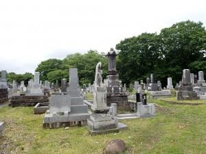 初めて来た冨浦墓地
