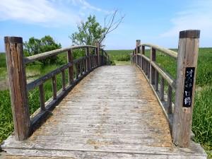 池にかかかる橋 おじさんが1人